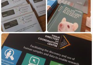 Collage of three images of flyers by presenting organisations from the event.